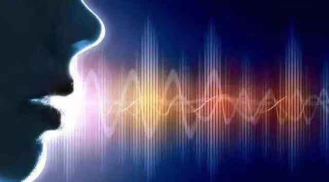 語音分析 / 語恴分析